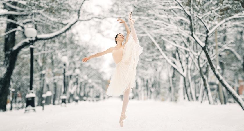 stage danse classique février